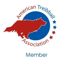 ATA_member_B